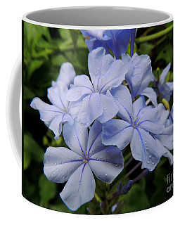 Coffee Mug featuring the photograph Lavender Raindrops by Kristine Merc