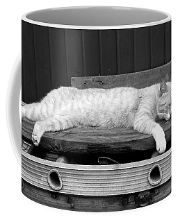 Coffee Mug featuring the photograph Lazy Cat by Andrea Anderegg