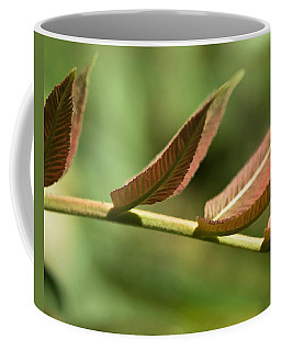 Leaf Bridge Coffee Mug