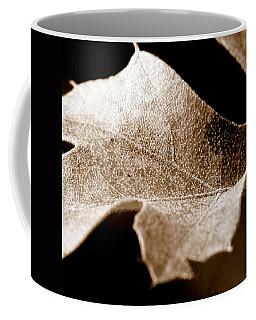 Coffee Mug featuring the photograph Leaf Collage 1 by Lauren Radke