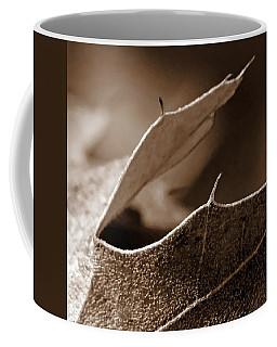 Coffee Mug featuring the photograph Leaf Collage 2 by Lauren Radke