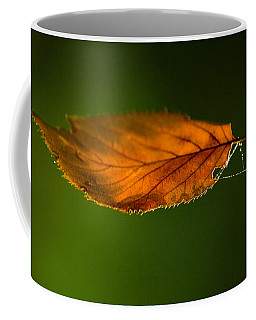 Leaf On Spiderwebstring Coffee Mug