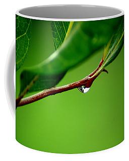 Leafdrop Coffee Mug