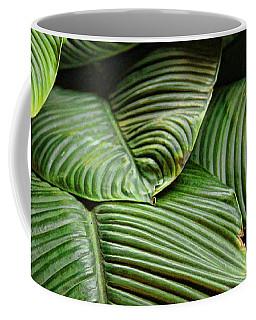 Leafy Lines Coffee Mug by Bill Kesler
