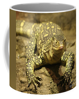 Coffee Mug featuring the photograph Leapin Lizards by John Telfer