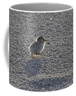 Least Tern Chick Coffee Mug