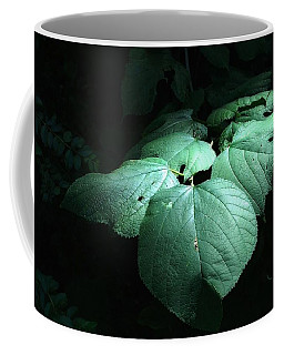 Leaves In A Patch Of Sunlight Coffee Mug by Ludwig Keck