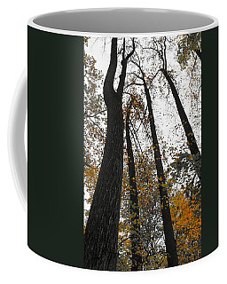 Coffee Mug featuring the photograph Leaves Lost by Photographic Arts And Design Studio