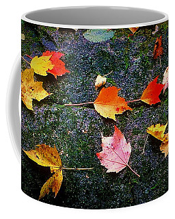 Leaves On Rock  Coffee Mug