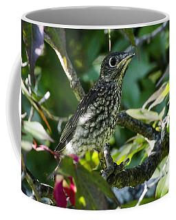 Left The Nest Coffee Mug