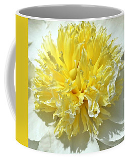 Coffee Mug featuring the photograph Lemon Drop by Lilliana Mendez