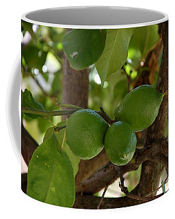 Lemons Trio Coffee Mug
