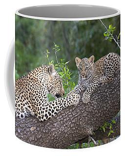 Leopard And Cub Masai Mara Kenya Coffee Mug