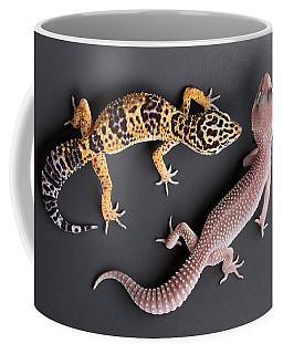 Leopard Gecko E. Macularius Collection Coffee Mug