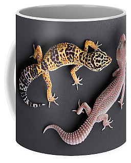 Leopard Gecko E. Macularius Collection Coffee Mug