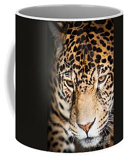 Leopard Resting Coffee Mug