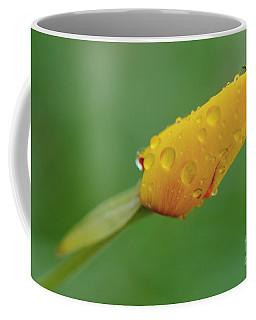 Poppy And Raindrops Coffee Mug