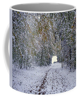 Coffee Mug featuring the photograph Let It Snow by Felicia Tica