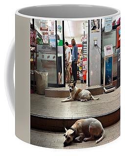Coffee Mug featuring the photograph Let Sleeping Dogs Lie Where They May by Mr Photojimsf