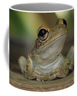 Let's Talk - Cuban Treefrog Coffee Mug