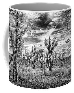 Coffee Mug featuring the photograph Levy Lake by Howard Salmon