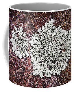 Lichen On Rock Coffee Mug