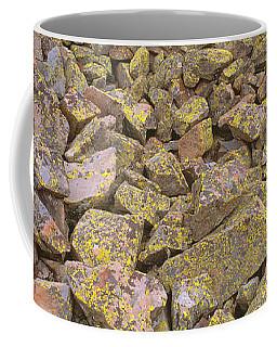 Lichens On Rocks At Yankee Boy Basin Coffee Mug