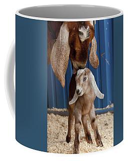 Licked Clean Coffee Mug