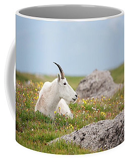 Lie Down In Green Pastures Coffee Mug
