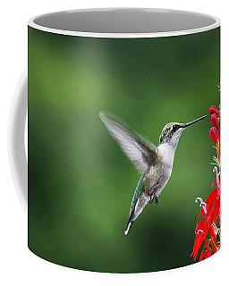 Coffee Mug featuring the photograph Lifes Little Pleasure by Judy Wolinsky