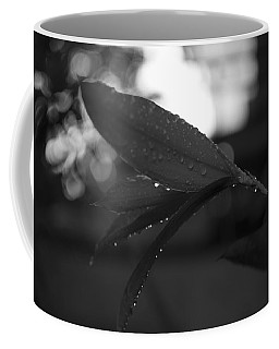 Coffee Mug featuring the photograph Light And Dark by Miguel Winterpacht