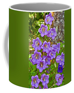 Light Purple Canterbury Bell Flowers  Coffee Mug by Valerie Garner