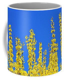 Lighting The Spring Sky Coffee Mug by Felicia Tica