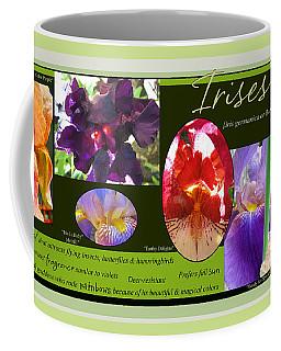 Like A Rainbow - Irises From The Garden Coffee Mug by Brooks Garten Hauschild
