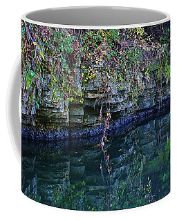 Like Looking Into A Mirror Coffee Mug by Bruce Bley