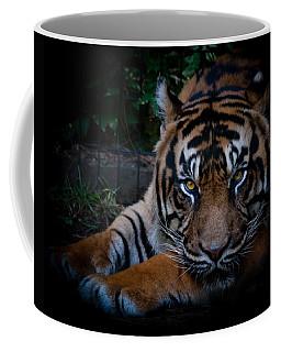 Like My Eyes? Coffee Mug