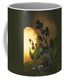 Lilacs At Sunset Coffee Mug by Penny Meyers