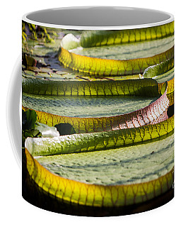 Lilly Pads Coffee Mug