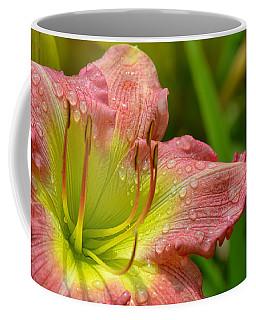 Lily After The Rain Coffee Mug