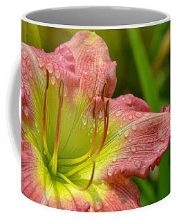 Lily After The Rain Coffee Mug