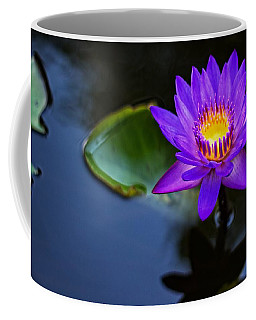 Coffee Mug featuring the photograph Lily Awakens by Dave Files