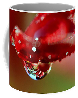 Coffee Mug featuring the photograph Lily Droplets by Suzanne Stout