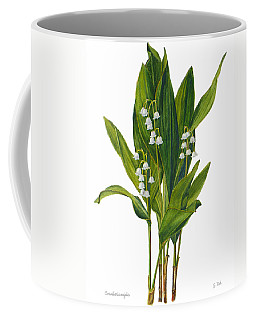 Lily Of The Valley - Convallaria Majalis Coffee Mug