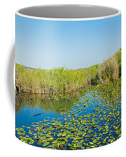 Lily Pads In The Lake, Anhinga Trail Coffee Mug