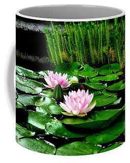 Coffee Mug featuring the photograph Lily Pond by John S