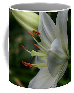 Coffee Mug featuring the photograph Lily Pure by Denyse Duhaime