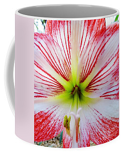 Lily Wow Coffee Mug