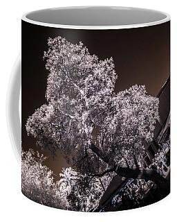 Lincoln Road Tree Coffee Mug