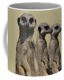 Line Dancing Meerkats Coffee Mug