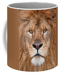 Lion Close Up Coffee Mug by Jerry Fornarotto